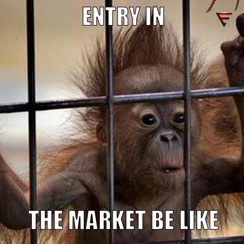 iamanentrepreneur startup monkey humour